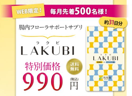 毎月先着500名!初回990円モニターを募集中!
